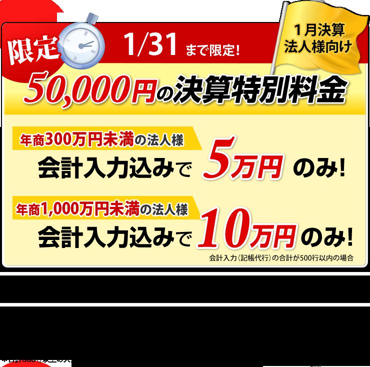 1月決算特別料金(法人確定申告)